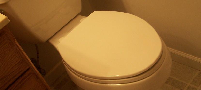 9th Wedding Anniversary gift,toilet!?!