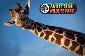 Day 2: African Safari WildlifePark