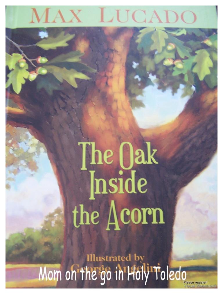 oak tree 020