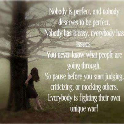 nobody-perfect