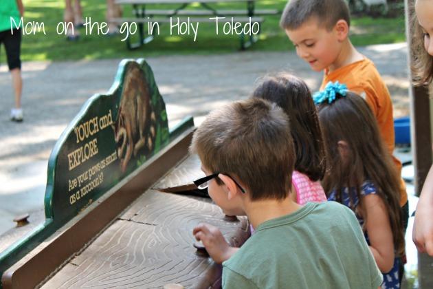 petting zoo 007