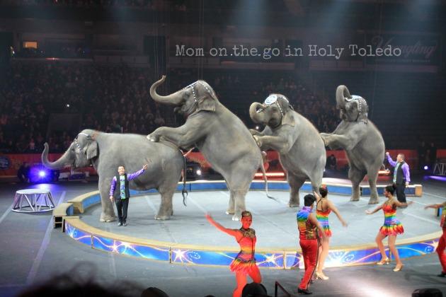 circus 071B