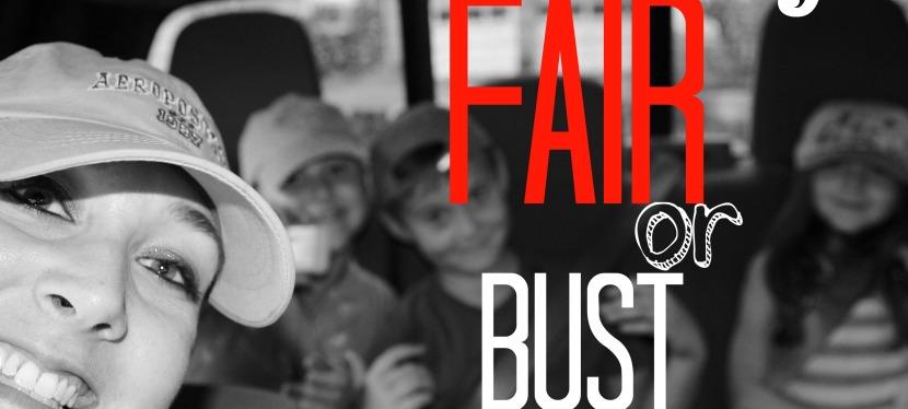 Fulton County Fair: Best FieldtripEVER!