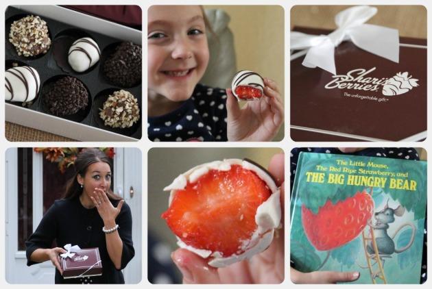 SHariBerriesRibbet collage