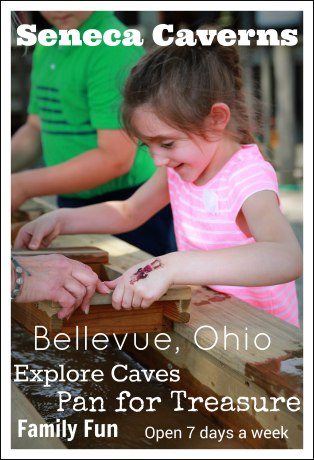 bellevuefun_2016 099FEATURE