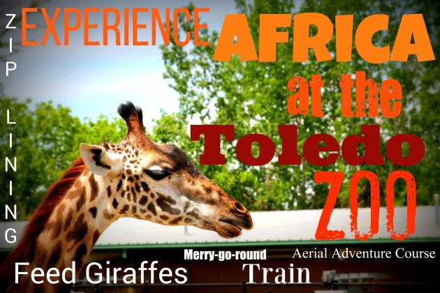 memorial_africazoo2016 098FEATURE
