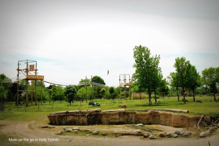 memorial_africazoo2016 143