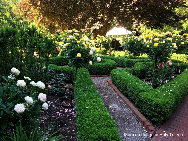 Toledo Metropark Treasures: Wildwood Preserve Metropark | Mom on the ...