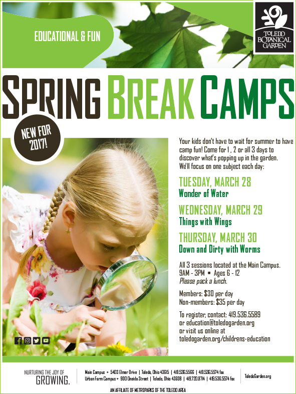 spring-break-camps