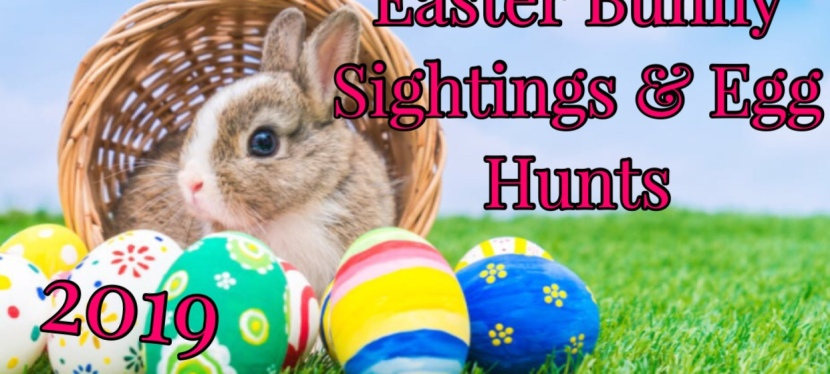 2019 Easter Bunny Sightings & Egg Hunts in Toledo
