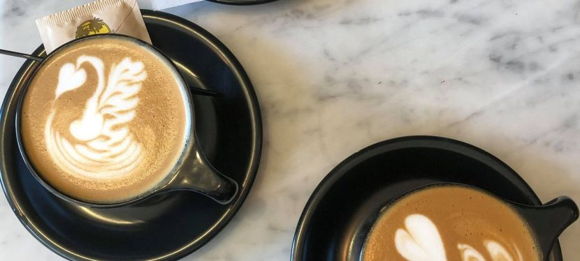 Where to Grab Coffee in Toledo
