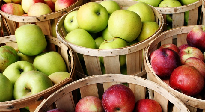 Apple Week – A Favorite Fall Festival at Sauder Village