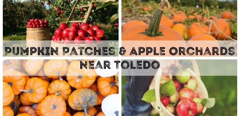 Toledo Fall Guide2020