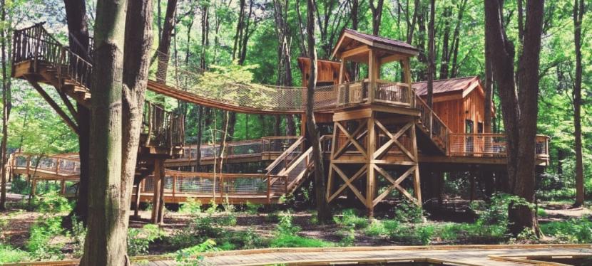 Win a 2-night stay in popular Northwest Ohio TreehouseVillage