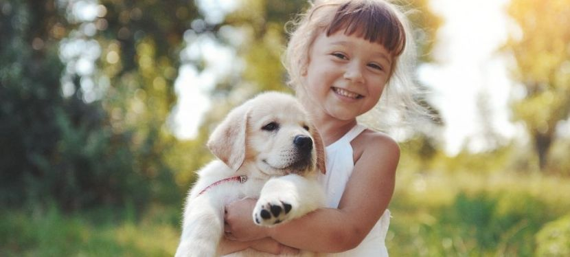 Exciting Outdoor Activities Kids Can Do WithDogs